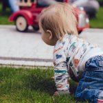 crawling, postpartum doula, ottawa
